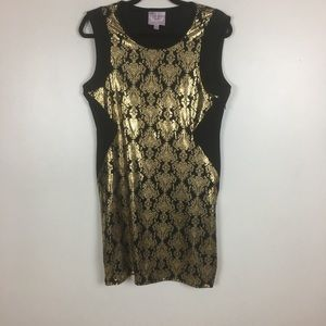 3 for $30 Romeo and Juliet Couture Shirt Dress